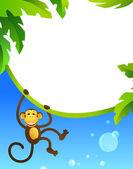 Marco con mono — Vector de stock