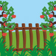 Fence and apple trees — Stock Vector
