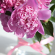 Bouquet of peonies blooms — Stock Photo
