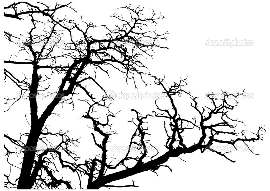 Tree branches silhouette vector illustration  Stock Vector #8545743