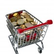 Shopping Cart with money — Stock Photo #10504638