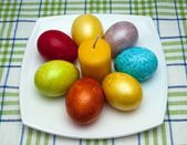 Coloured easter eggs — Stock Photo