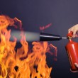 Man with extinguisher fighting a fire — Stock Photo #10522514