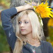 Young beautiful woman with a bouquet of autumn leaves - Foto Stock