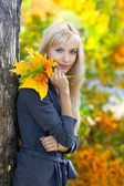 Young beautiful woman in autumn park — Stock Photo