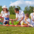Family picnic in park - Foto de Stock