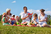 Family picnic in park — Stock Photo