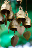 Copper Bells — Stock Photo