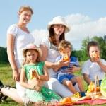 Family picnic — Stock Photo #10462892