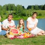 Family picnic — Stock Photo #10462910
