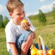 Boy with apples — Stock Photo #10526288