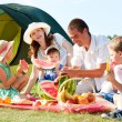 Family picnic — Stock Photo #10526297