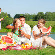 Family picnic — Stock Photo #10526309