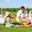Family picnic — Stock Photo #10675516