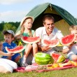 Family picnic — Stock Photo #10675526