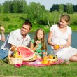 Family picnic — Stock Photo #10675537