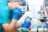 Laboratorní test — Stock fotografie