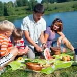 Family picnic — Stock Photo #9086590