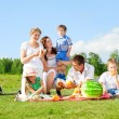 Family picnic — Stockfoto #9087093