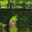 Old stone bridge — Stock Photo #10520782