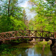 Old wooden bridge — Stockfoto #10522065
