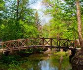 Starý dřevěný most — Stock fotografie