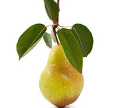 Pear with leaves — Stock Photo