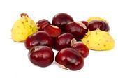 Chestnuts isolated — Stock Photo