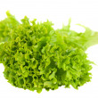 Salad leaves isolated — Stock Photo #9392276