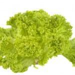 Salad leaves — Stock Photo #9738327