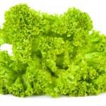 Salad leaves — Stock Photo