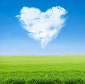 Green field blue sky with cloudy heart — Stock Photo