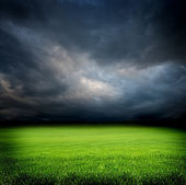 Dark cloudy sky and green grass meadow — Stockfoto