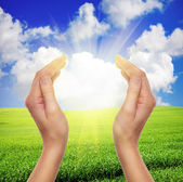 Female hands holding sun over green field of grass and blue sky — Stock Photo