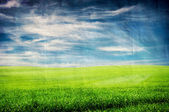 Grungy textured landscape with field and sky — Stockfoto