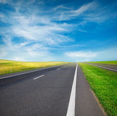 Green field and road — Stock Photo