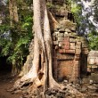 Angkor Wat — Stock Photo #8133708