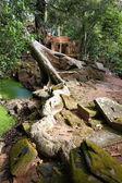 Angkor wat — Stock fotografie