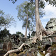 Ancient ruins at Angkor wat, Cambodia — Stock Photo