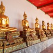 Gold statues of the Buddha — Stock Photo