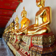 Buddhas at Wat Pho — Stock Photo #8518889