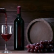 Bottle of wine — Stock Photo #10077278