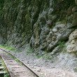 Mountain railway - Stock Photo