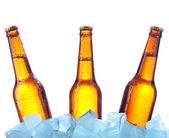 Bottle beer in ice — Stock Photo