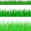 3 backgrounds of fresh spring green grass Isolated On White. Vec — Stock Vector #9173342