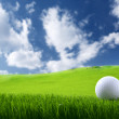 Golf ball — Stock fotografie