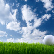 Golf ball — Stock Photo #9871863