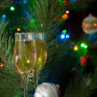 Christmas Cheer — Stock Photo #8384826