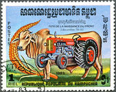 KAMPUCHEA - 1983: shows bull and tractor — Stock Photo