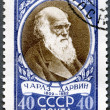Stock Photo: USSR - 1959: shows Charles Darwin (1809-1882), English biologist